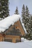 Paesaggio dello Snowy nelle montagne Immagini Stock Libere da Diritti
