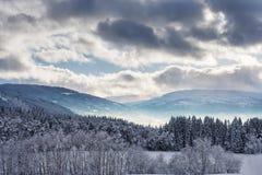Paesaggio dello Snowy in Norvegia Fotografia Stock