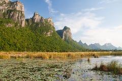 Paesaggio dello stagno di Lotus Fotografie Stock