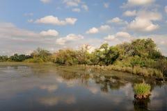 Paesaggio dello stagno di ritegno dell'acqua immagine stock