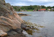 Paesaggio dello svedese del litorale del fiordo Fotografia Stock