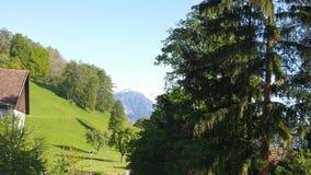 Paesaggio dello svizzero Immagini Stock