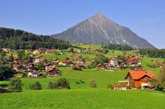 Paesaggio dello svizzero Fotografia Stock