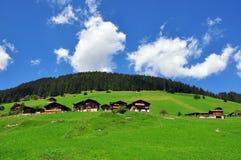 Paesaggio dello svizzero Immagini Stock Libere da Diritti