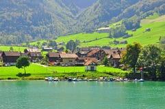 Paesaggio dello svizzero Immagine Stock