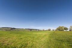 Paesaggio dello svizzero con i prati Immagini Stock Libere da Diritti