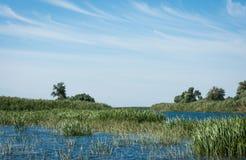 Paesaggio delta della Russia centrale, Volga Immagine Stock