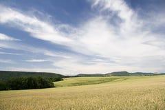 Paesaggio di agricoltura fotografie stock