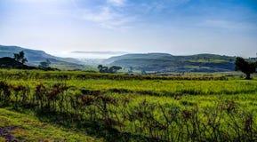 Paesaggio di agricoltura con i campi del tef in Etiopia Fotografia Stock