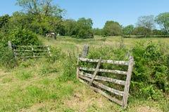Paesaggio di agricoltura con il recinto Immagini Stock