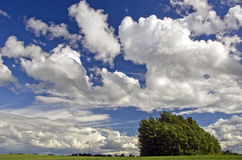 Paesaggio di agricoltura di estate con le nuvole Fotografie Stock Libere da Diritti