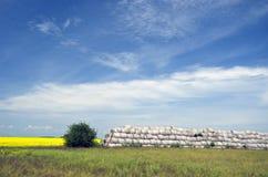 Paesaggio di agricoltura di ora legale Fotografia Stock Libera da Diritti