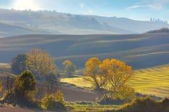 Paesaggio di agricoltura di Sunny Autumn, Toscana Immagine Stock