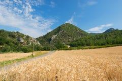Paesaggio di agricoltura nel sud della Francia Fotografia Stock