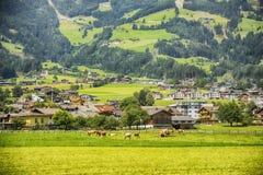 Paesaggio di agricoltura nel Tirolo, Austria Immagine Stock
