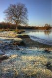 Paesaggio di alba di inverno del lago congelato Immagini Stock