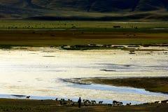 Paesaggio di Ali County Immagine Stock