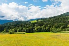 Paesaggio di Alpen Immagine Stock Libera da Diritti