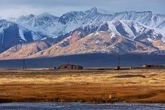 Paesaggio di Altai del mongolian Immagine Stock Libera da Diritti