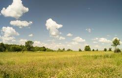 Paesaggio di anno sul cielo blu del fondo Fotografia Stock
