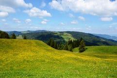 Paesaggio di Appenzell Immagini Stock