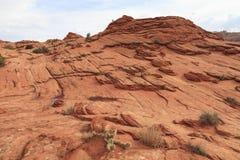 Paesaggio di area di regione selvaggia del nord delle colline del coyote Fotografia Stock Libera da Diritti