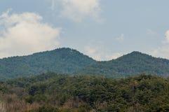 Paesaggio di area montagnosa con gli alberi sempreverdi Fotografie Stock Libere da Diritti
