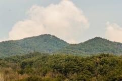 Paesaggio di area montagnosa con gli alberi sempreverdi Fotografia Stock