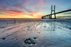Paesaggio di arti a Lisbona ad alba Fotografie Stock