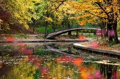 Paesaggio di autunno Immagine Stock Libera da Diritti