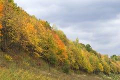 Paesaggio di autunno. fotografia stock