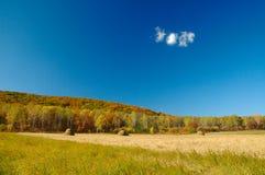 Paesaggio di autunno. Fotografie Stock