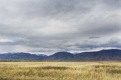 Paesaggio di autunno di Altai della montagna La Russia Fotografie Stock