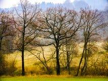 Paesaggio di autunno in Beskids Moravian-Slesiano in Cechia del Nord Immagine Stock Libera da Diritti