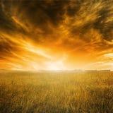 Paesaggio di autunno con erba arancio ed il cielo durante il tramonto Immagini Stock