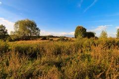 Paesaggio di autunno con erba verde su un prato e cloudly su un cielo Fotografia Stock Libera da Diritti