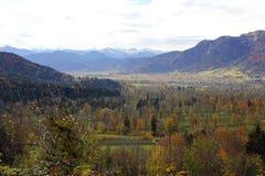 Paesaggio di autunno con gli alberi Fotografia Stock