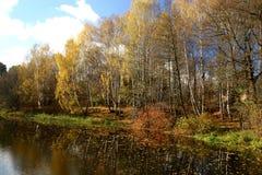 Paesaggio di autunno con i fogli ed il fiume. fotografie stock libere da diritti