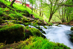 Paesaggio di autunno con il fiume della montagna che passa fra le pietre muscose per la foresta variopinta Fotografia Stock Libera da Diritti