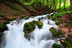 Paesaggio di autunno con il fiume della montagna che passa fra le pietre muscose per la foresta variopinta Fotografie Stock Libere da Diritti