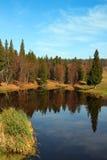 Paesaggio di autunno con il lago della foresta Immagini Stock Libere da Diritti