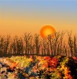 Paesaggio di autunno con il tramonto ed alberi nella parte posteriore Fotografia Stock