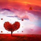 Paesaggio di autunno con l'albero di amore immagine stock