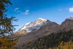 Paesaggio di autunno con la montagna in Val Martello, southtyrol, Italia Fotografie Stock