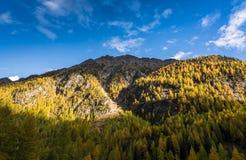 Paesaggio di autunno con la montagna in Val Martello, southtyrol, Italia Immagini Stock Libere da Diritti
