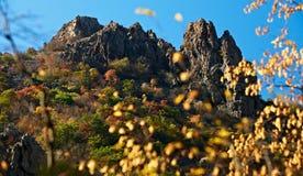 Paesaggio di autunno con la roccia Immagini Stock