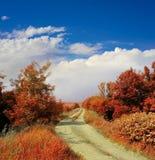 Paesaggio di autunno con la strada fotografia stock
