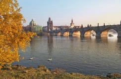 Paesaggio di autunno con le viste del ponte di Charles a Praga Fotografia Stock