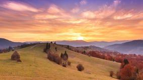 Paesaggio di autunno con nebbia nelle montagne Foresta dell'abete sulle colline archivi video