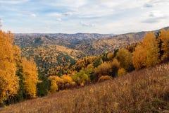 Paesaggio di autunno dalla montagna di Tserkovk Fotografia Stock Libera da Diritti